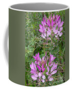 Cleome Sparkler Lavender Coffee Mug