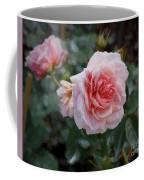 Climber Romantica Tea Rose, Digital Art Coffee Mug