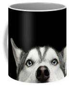 Close-up Head Of Peeking Siberian Husky Coffee Mug by Sergey Taran