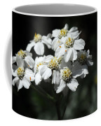 Close Up Of A Alpine Wildflower Coffee Mug