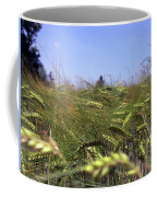 Close-up Of A Cornfield Coffee Mug