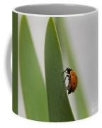Close Up Of A Ladybug Walking On A Long Green Leaf Coffee Mug
