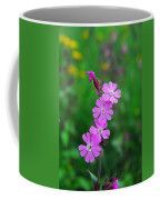 Close Up Of A Least Primrose Flower Coffee Mug