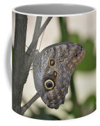 Close Up Of A Pretty Brown Morpho Butterfly  Coffee Mug