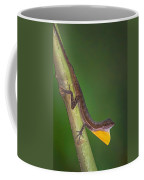 Close-up Of An Anole, Tortuguero, Costa Coffee Mug