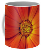 Close Up Of An Orange Daisy Coffee Mug