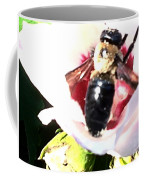 Close Up Of Bumble Bee On Flower Coffee Mug