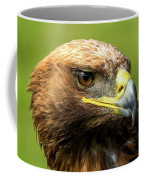 Close-up Of Golden Eagle With Turned Head Coffee Mug