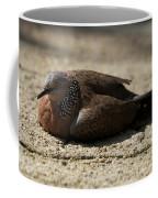 Close-up Of Mottled Pigeon On Sandy Ground Coffee Mug