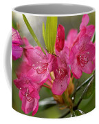 Close-up Of Pink Horatio Flowers Coffee Mug