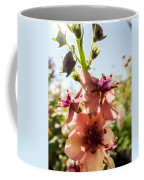 Close-up Of Pink Mullein Flowers Coffee Mug
