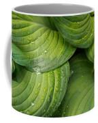 Close-up Of Raindrop On Green Leaves Coffee Mug