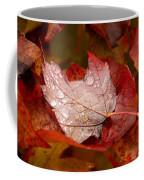 Close-up Of Raindrops On Maple Leaves Coffee Mug