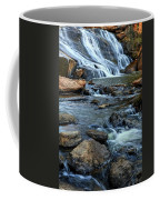 Close Up Of Reedy Falls In South Carolina Coffee Mug