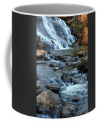 Close Up Of Reedy Falls In South Carolina II Coffee Mug