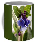 Close-up Of Virginia Bluebells Coffee Mug