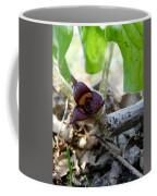 Close-up Of Wild Ginger Coffee Mug