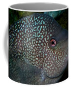 Close Up Coffee Mug
