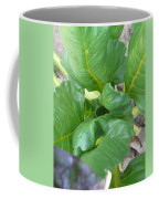 Close Up With Chard Coffee Mug