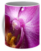 Close View Of A Pink Orchid Blossom Coffee Mug