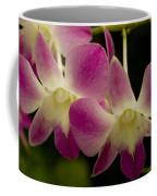 Close View Of A Pink Orchid Flowers Coffee Mug