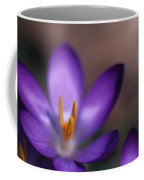 Close View Of A Purple African Violet Coffee Mug