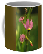 Close View Of Shooting Star Flowers Coffee Mug by Phil Schermeister