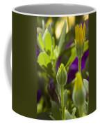 Close View Of Two Yellow Symphony Coffee Mug