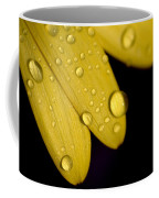 Close View Of Water Drops On The Petals Coffee Mug