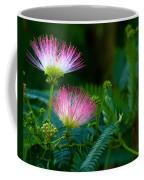 Closeup Of A Mimosa Bloom Coffee Mug