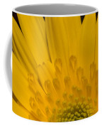Closeup Of A Yellow Chrysanthemum Coffee Mug
