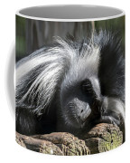 Closeup Of Black And White Angolian Primate Sleeping On Log Raft Coffee Mug