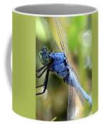 Closeup Of Blue Dragonfly Coffee Mug