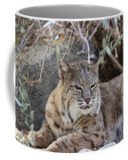 Closeup Of Bobcat Coffee Mug