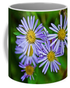 Closeup Of Leafy Bract Asters On Iron Creek Trail In Sawtooth National Wilderness Area-idaho  Coffee Mug