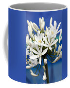 Closeup White Californian Flower Coffee Mug