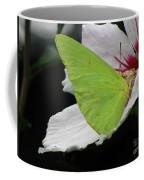 Cloudless Giant Sulphur Butterfly  Coffee Mug