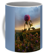 Clover At Sunset Coffee Mug by Viviana Nadowski