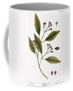 Cloves, 1735 Coffee Mug