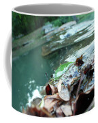 Cluster Of Leaves Coffee Mug