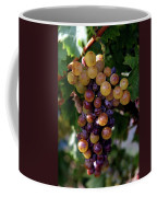 Cluster Of Ripe Grapes Coffee Mug