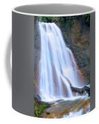 Coal Creek Falls Coffee Mug
