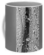 Coast - Crevice Coffee Mug