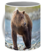 Coastal Brown Bear Coffee Mug