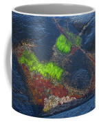 Coastal Floor At Low Tide Coffee Mug