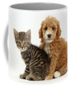Cockapoo Puppy And Tabby Kitten Coffee Mug