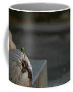 Coconut Cover Coffee Mug