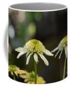 Coconut Lime Echinacea Coffee Mug