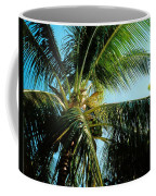 Coconut Tree Coffee Mug