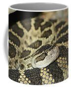 Coiled Rattlesnake Coffee Mug
